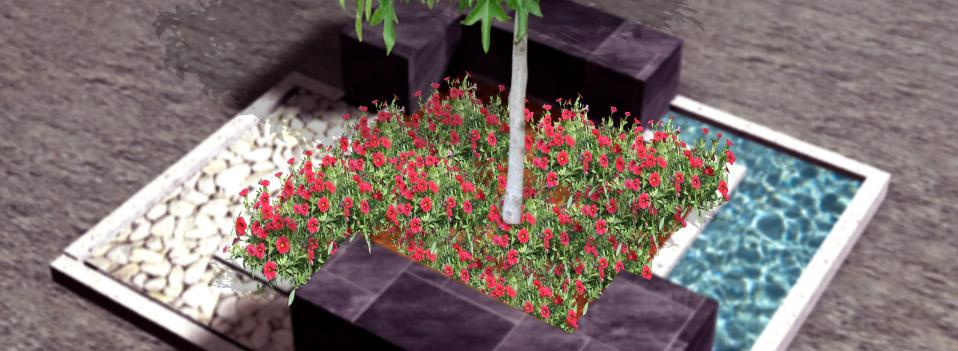 Dise o y mantenimiento de jardines en madrid jardiner a for Programa para disenar jardines